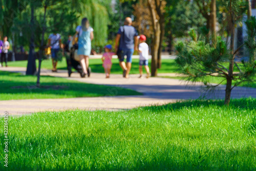 Valokuvatapetti city park on a summer day, green lawns with grass and trees, paths and benches,