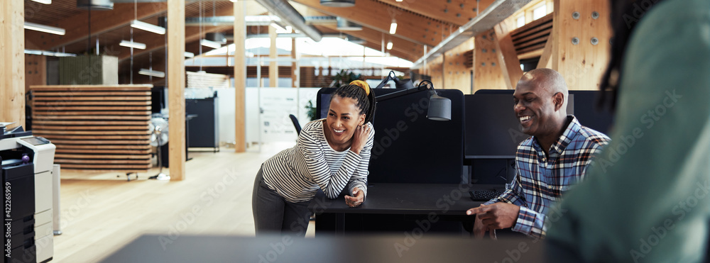 Fototapeta Group of young African American businesspeople laughing together during a casual meeting in a modern office.