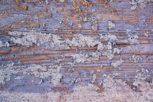 An Old Wooden Board With Applied And Cracked Lilac Paint, On Top Of The Remnants Of Gray Paint