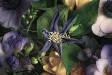 Gros Plan Sur Une Fleurs Violette à Six Pétales Dans Un Bouquet De Fleurs