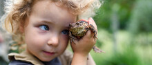 Close Up Portrait Of Small Girl Holding A Frog Outdoors In Summer.