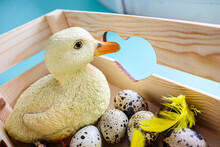 A Cute Yellow Duckling In A Wooden Box With A Bunch Of Dotted Easter Eggs. A Spring Concept.