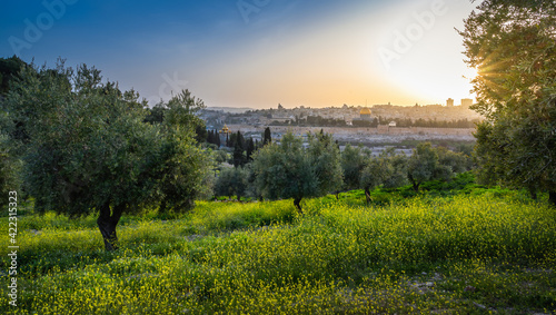 Fotografie, Obraz Beautiful sunset view of Jerusalem: the Old City with Dome of the Rock on the Te