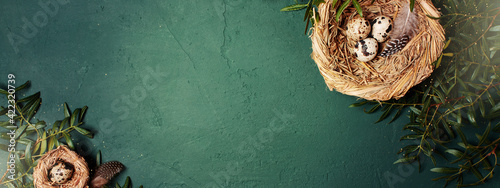 Fototapeta Easter sunny festive organic banner decorated with branches and nest with small easter eggs obraz