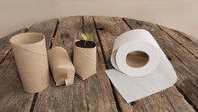Recycling, Reuse Of Cardboard From Toilet Paper Tubes. Pot For Seed Sprouting. Toilet Paper. Pumpkin Sprout.