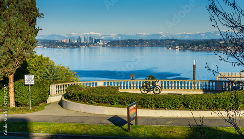 Photo Fence And Bellevue Skyline 3