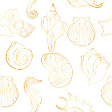 Elegant Line Sea Shells, Vector Art Pattern Illustration.