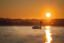 Sunset On The Sunset Lake