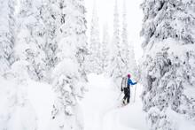 A Man Backcountry Skiing The Bonnington Traverse, Selkirk Mountains, Columbia Mountains, Nelson, British Columbia.