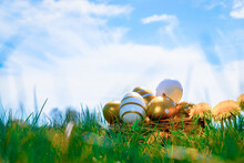 Easter Eggs. Golden Egg With Yellow Spring Flowers In Celebration Basket On Green Grass Background. Easter Hunt Concept.