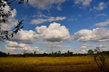 Beautiful Sky .Cumulonimbus Cloud And Cirrus Cloud Over Rice Field. Image Have Noise And Film Grain.