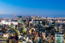 Beautiful Night Scene Of Tokyo Skyline. Tokyo, Japan.