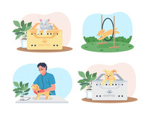 Pet Care 2D Vector Web Banner, Poster Set. Training, Medical Care. Veterinarian Doctor, Dogs Flat Characters On Cartoon Background. Cat In Adoption Box Printable Patch, Colorful Web Element Collection