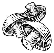 Mushroom Vegetable Vintage Woodcut Illustration