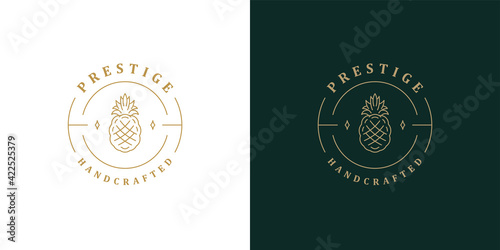 Fototapeta Elegant pineapple logo template linear vector illustration obraz