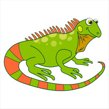 Iguana. Cartoon Character Chameleon Isolated On White Background. Template Of Cute Wild Animal. Education Card For Kids Learning Animals. Suitable For Decoration And Design. Vector In Cartoon Style.
