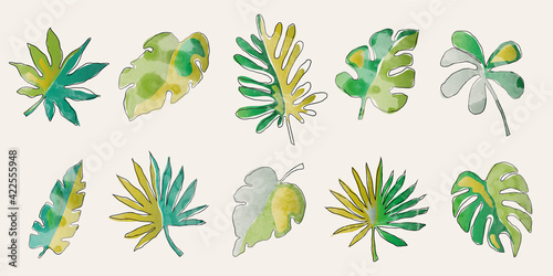 Fototapeta Set of watercolor texture tropical leaves illustration. Nature illustration with textured abstract leaves.  obraz