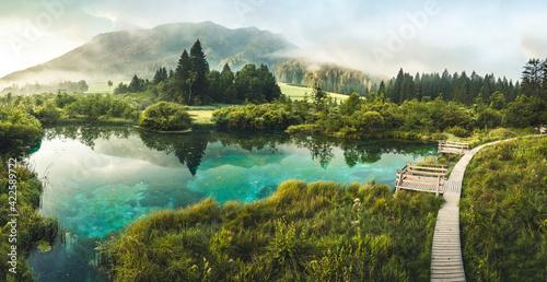 Fotografie, Obraz Nature Reserve Zelenci, krajnska gora, Slovenia, Europe