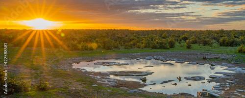 Photo Moringa waterhole Halali camp in Etosha national park at sunset, panorama
