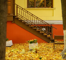 Wooden Staircase Next Yellow Stoned House. Fallen Autumn Leaves. Empty Bench And Trees Near Home. Fall Time Season.