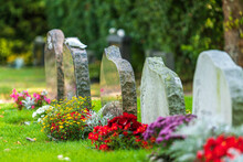 Row Of Tombstones Decorated With Colorful Flowers