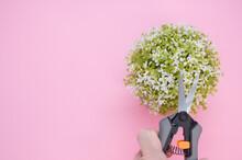 Man Holding Gardening Pruning Shears Against Alyssum Flowers On Pink Background