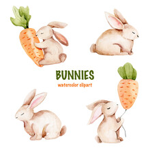 Watercolor Easter Bunnies With Carrot. Watercolor Clipart