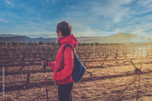 Happy woman with blue backpack and hiking clothes enjoys the vineyards in winter in La Rioja, Spain.
