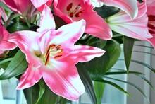 Pink Lilies In A Flower Arrangement - Stock Photo.jpg
