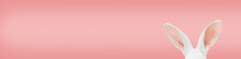 White Rabbit Ears On A Light Pink Background With Copy Space. Easter Minimalism Header.