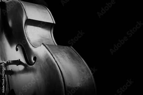 Canvas Double bass. Contrabass classical music instrument