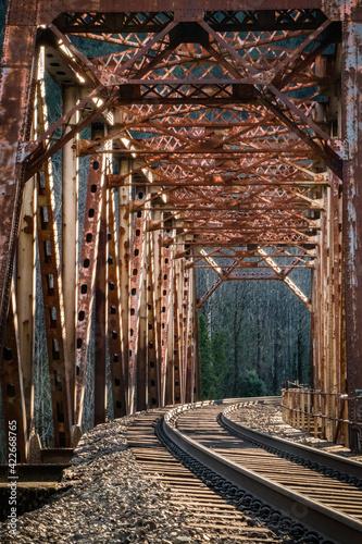 Fotografie, Obraz Rail Road Trestle