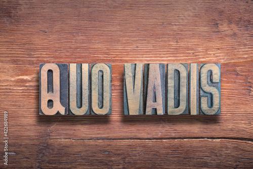 Canvas-taulu quo vadis wood