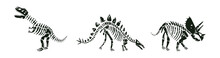 Vector Set With Dinosaurs Skeletons Silhouettes In White And Black. Stegosaurus, T-rex And Triceratops Dinos On White Background.