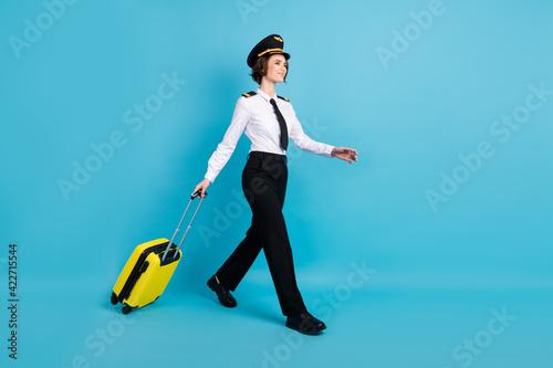 Obraz na plátne Full size profile photo of optimistic nice brunette hair lady carry bag go look