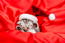 Funny Kitten Wearing Red Santas Hat Sleeps Under A Red Blanket On  Satin Bedding. Top Down View