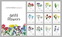 Floral Wall Vertical Calendar For 2022, The Week Starts On Sunday. Template A4 Format Calendar Set Of Month With Wild Flowers, Meadow Herbs, Plants. Botanical Posters. Cartoon Vector Illustration.