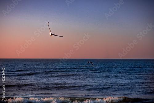 Fototapeta Zachód słońca nad morzem w Krynicy Morskiej w Polsce obraz