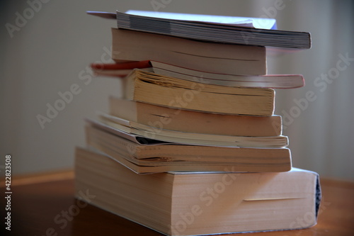 Canvas Print Stack of books to read and read again