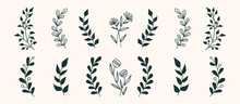 Set Of Vector Vintage Floral Elements. Cute Set Of Doodle Frames And Borders. Elements Flowers, Branches, Swashes And Flourishes