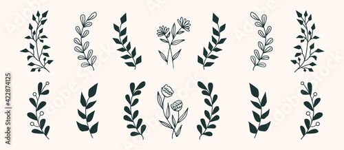 Fototapeta Set of vector vintage floral elements. Cute set of doodle frames and borders. Elements flowers, branches, swashes and flourishes obraz