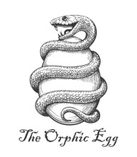 The Orphic Egg Tattoo