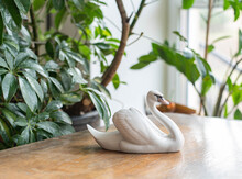Graceful Swan Porcelain Figurine -  On A Wooden Table With Plants Before The Window