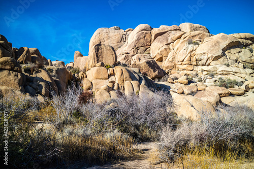 Boulder of rocks in Joshua Tree National Park