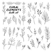 Floral Doodle Design Elements. Hand Drawn Decorative Leaves And Wreaths. Flower Ornament Dividers. Tree Branches With Leaf And Flowers.