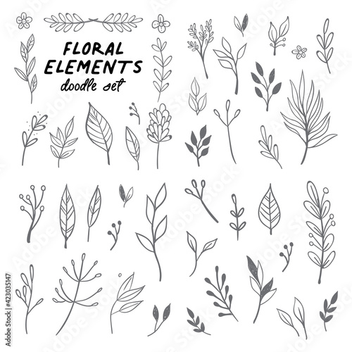 Fototapeta Floral doodle design elements. Hand drawn decorative leaves and wreaths. Flower ornament dividers. Tree branches with leaf and flowers. obraz