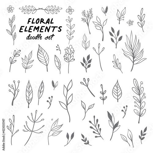 Fotografija Floral doodle design elements