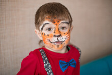Little Boy With Tiger Face Painting