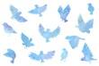 綺麗な青色の水彩の鳥セット