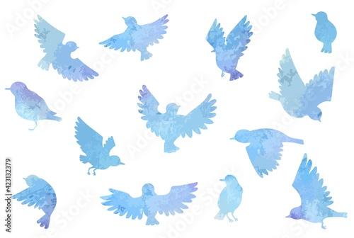 Leinwand Poster 綺麗な青色の水彩の鳥セット